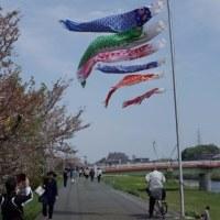 鴨居駅前鶴見川17