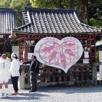 平成二十九年 松尾祭り 神幸祭(おいで)