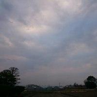 2017年1月20日 朝空