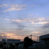 10月21日 コンクリ打ちの次の日