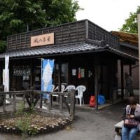 赤城神社とヤマツツジ