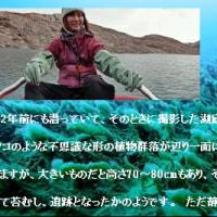 現代の探検家《田邊優貴子》 =94=