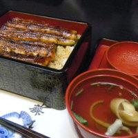 浜松 うなぎ藤田