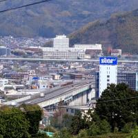静岡市街を走るN700系新幹線 (オマケ は花の風景)