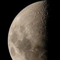 ●今夜のお月様(月齢7.9)