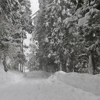 世界遺産・ドカ雪降る白川郷 33