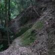 猿投山登山道