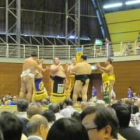 大相撲入間場所