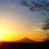 早春の夕陽に浮かぶ富士