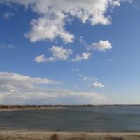 チャリンコGT! -渡良瀬遊水池- (3) 視野が広いと心も広くなるのだ