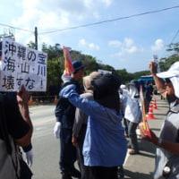 N1への砂利搬入に対する抗議と高江の森に咲く花