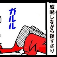 腰痛解消法