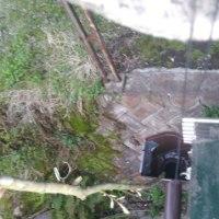 雨漏り修理、苗作り等細々と