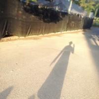 運動に散歩、大泉緑地へ♪