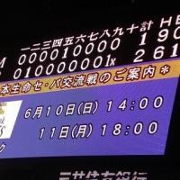 観戦試合 ぶらぜる神様~泣けたシビれた。甲子園サヨナラ勝ち初見!!!
