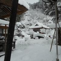 2016-17達身寺の冬01/15 20年振りの大雪