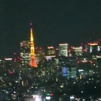 横浜ランドマークタワー69階から見る夜景6
