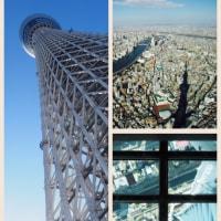 三が日目は「東京スカイツリー」