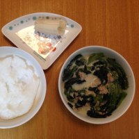 今日の離乳食(晩御飯)【114日目】