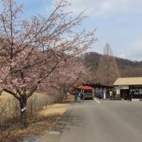 ぶらり旅・みかも山公園⑥出発地点まで(栃木県栃木市)