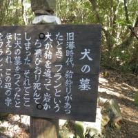 虚空蔵山(一等三角点608.53)