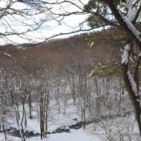 午後の森渓谷雪景色の中でバレンタインチョコレートを作る。