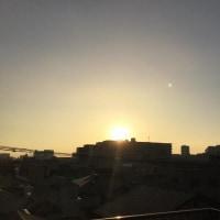 秋晴れの爽やかな朝が続いていますね。(^o^)(^o^)