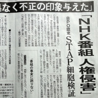 NHK特番「小保方さんへの人権侵害」とBPOに認定される