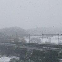 11月の雪の朝