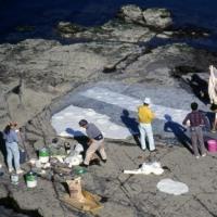 1990年の韓国恐竜足跡見学旅行 その5 型取り