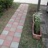 2017.5.28(日) 家庭菜園の様子(庭もちょっと)