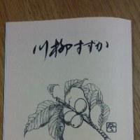 川柳すずか 270号(28年6月号)掲載句