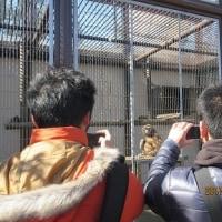 久々動物園へ
