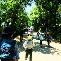 うさぎの会で高尾登山(今年2回目)