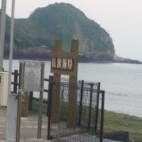無料キャンプ場 長浜海岸 奥には阿波命神社