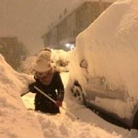 ヴァイキングウェザー 強風·雪·みぞれミックス