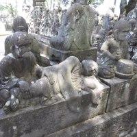 川越喜多院に行って参りました