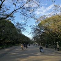 台東区 上野 上野恩賜公園