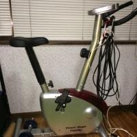 お座敷自転車