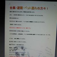 【拡散希望】【転載】台風・避難・ペット連れの方々!