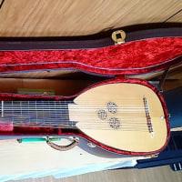 バロックリュートの弦を一新