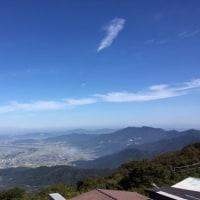 パンジー種まきからの育苗日記2016&筑波山