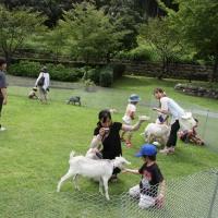 10月 7日(日)、第3回鏡川こども祭 今年も鏡川・トリム公園で開催します