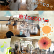 6月コアラレポ♡