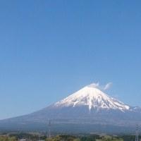 大学の日々 春の富士山
