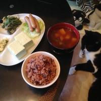 天栄村の青ばた豆腐