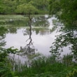 裏磐梯を歩くー中瀬沼・檜原湖探勝路