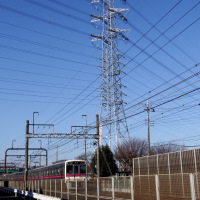 2月25日、鉄塔とサギと緑電車~♪
