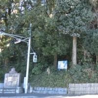 小金城址(大谷口歴史公園) 【千葉県松戸市】 後北条流の堀が残る