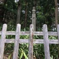 高野山町石道(下りコース)歩く